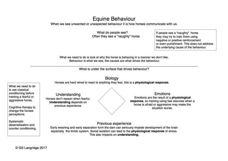 Diagram of causes of behaviour
