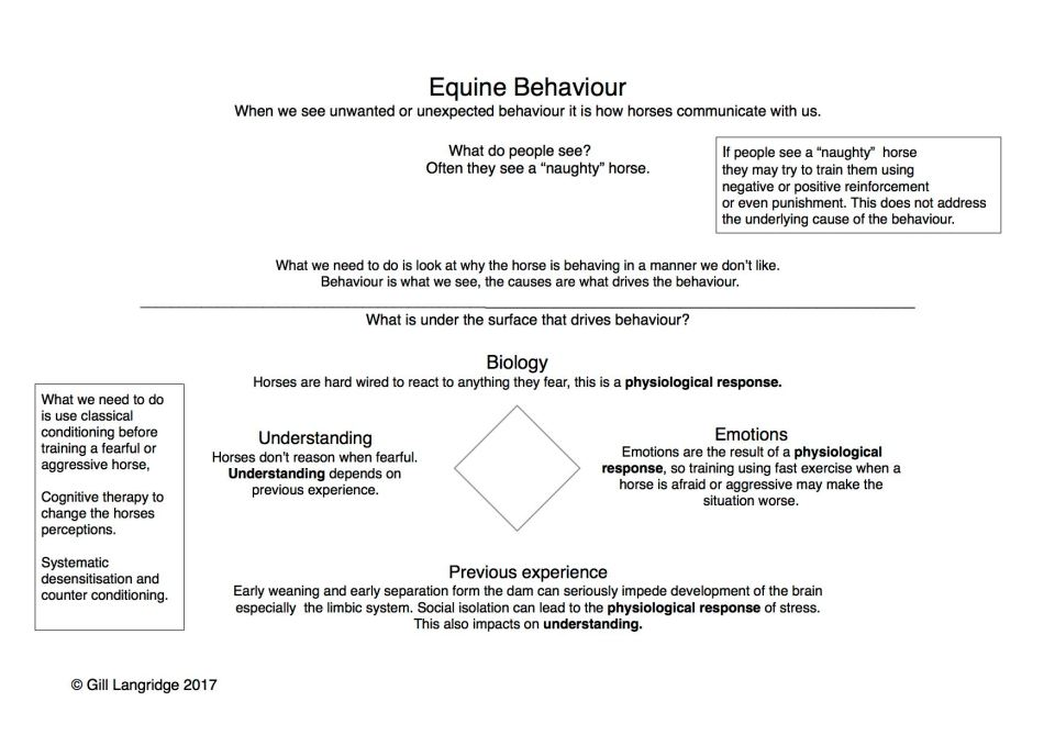 Diagram of causes of behaviour
